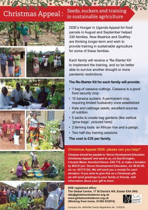 DDE Xmas Appeal 2020 for web